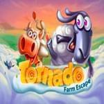 Игровой автомат Торнадо